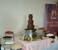 "27"" Chocolate Fountains"